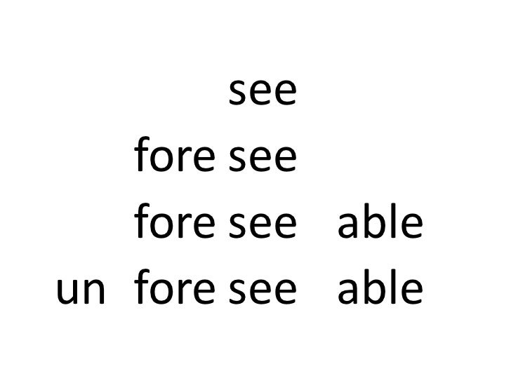 Word Morphology + Reading Comprehension