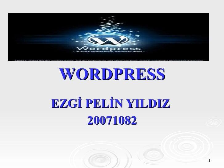 WORDPRESS EZGİ PELİN YILDIZ  20071082