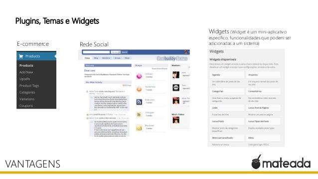 Plugins, Temas e Widgets VANTAGENS E-commerce Rede Social Widgets (Widget é um mini-aplicativo específico, funcionalidades...