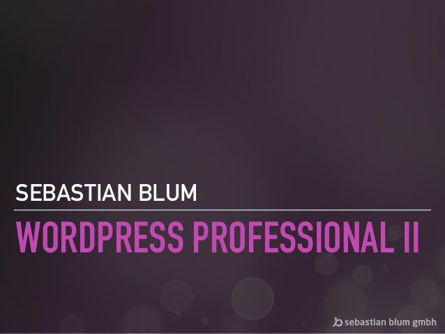WORDPRESS PROFESSIONAL II SEBASTIAN BLUM