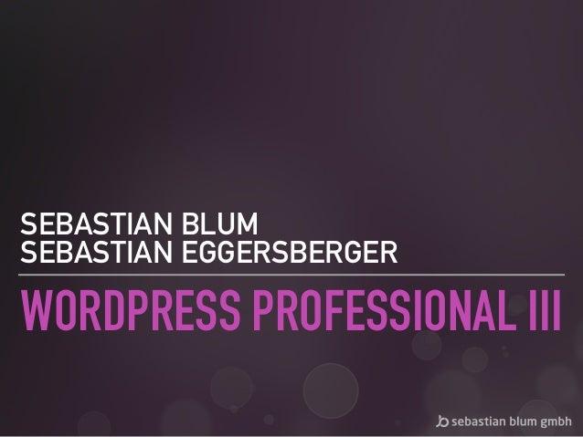 WORDPRESS PROFESSIONAL III SEBASTIAN BLUM SEBASTIAN EGGERSBERGER