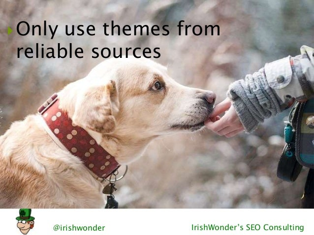 @irishwonder IrishWonder's SEO Consulting Only use themes from reliable sources