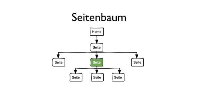 Seitenbaum