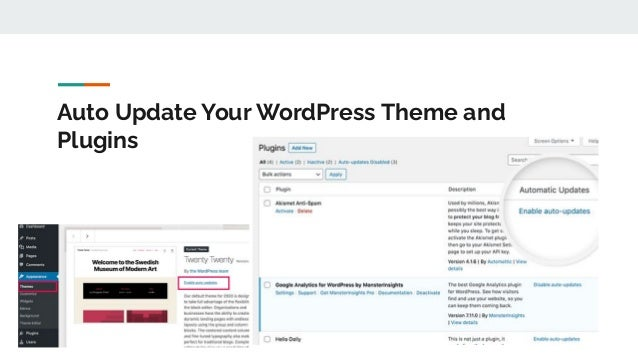Auto Update Your WordPress Theme and Plugins