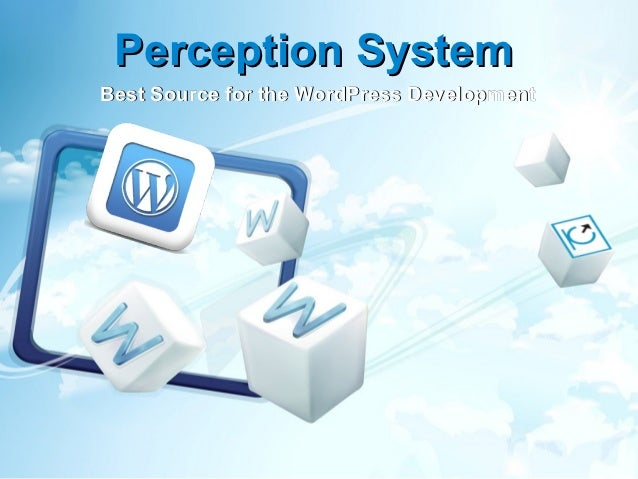 Perception SystemBest Source for the WordPress Development