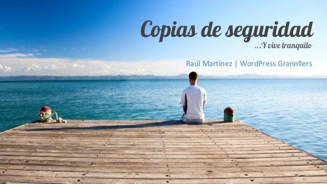 Copias de seguridad ...Y vive tranquilo Raúl Martínez | WordPress Granollers