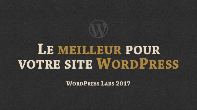 LE MEILLEUR POUR  VOTRE SITE WORDPRESS WORDPRESS LABS 2017