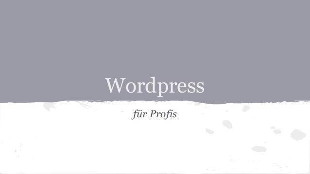 Wordpress für Profis