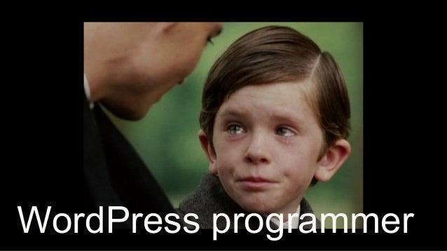 17 WordPress programmer