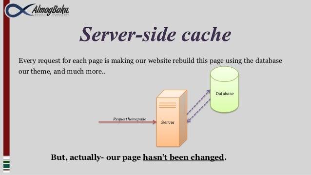 Wordpress optimization slideshare - 웹