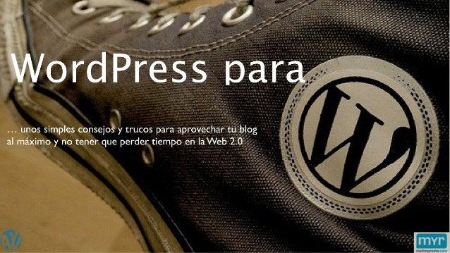 Word Press Para Vagos