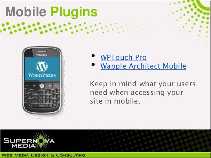 Mobile Plugins            •    WPTouch Pro            •    Wapple Architect Mobile            Keep in mind what your users...