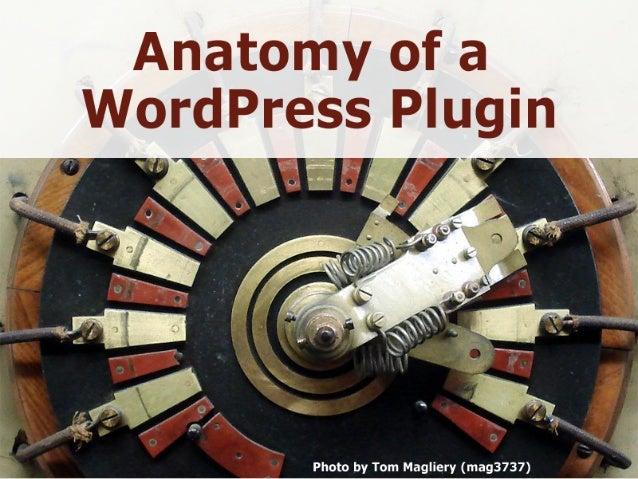 Selecting the Right WordPress Plugin Slide 2