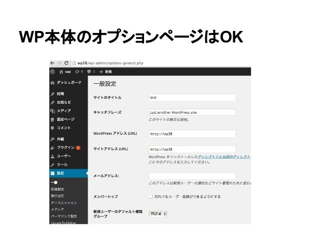 WP本体のオプションページはOK