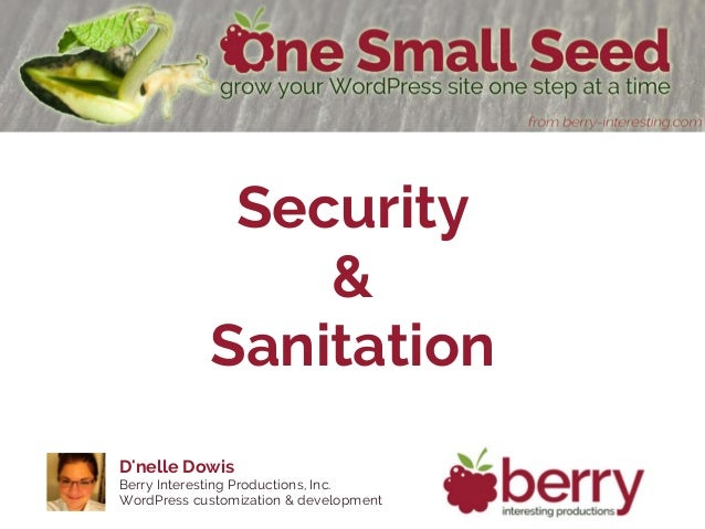 Dnelle DowisBerry Interesting Productions, Inc.WordPress customization & developmentSecurity&Sanitation