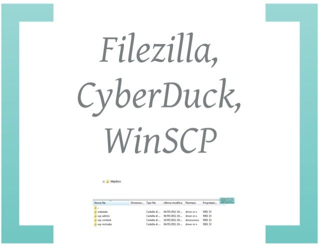Word Press Starter Kit: Widget  & Plugin
