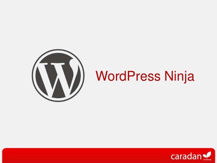 WordPress Ninja<br />