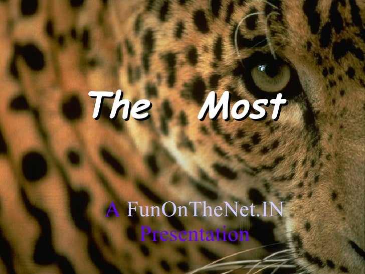 The  Most A  FunOnTheNet.IN  Presentation