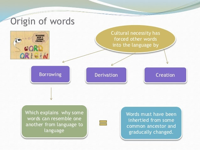 what is the relationship of etymology to borrowed words