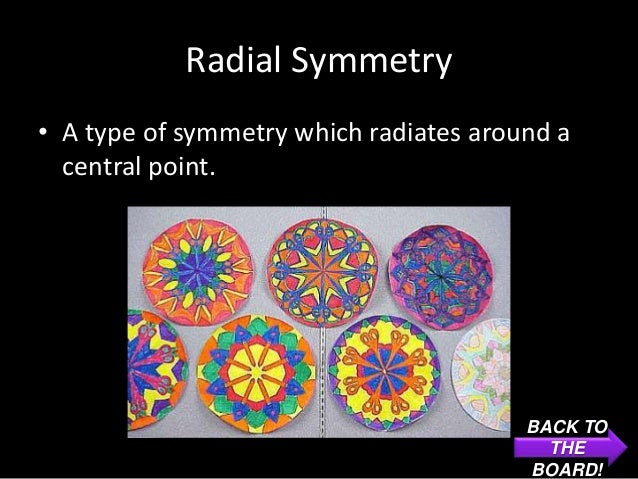 Radial Symmetry• A type of symmetry which radiates around a  central point.                                        BACK TO...