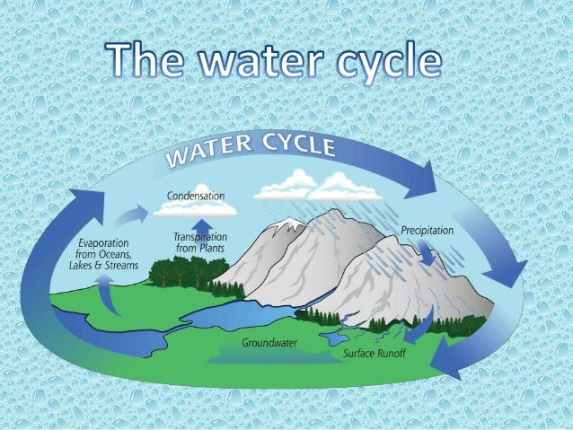 Introduction Water Definition Water Cycle Definition Water processes • Evaporation • Precipitation • Runoff