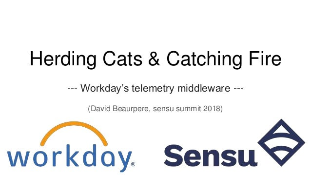 Herding Cats & Catching Fire --- Workday's telemetry middleware --- (David Beaurpere, sensu summit 2018)