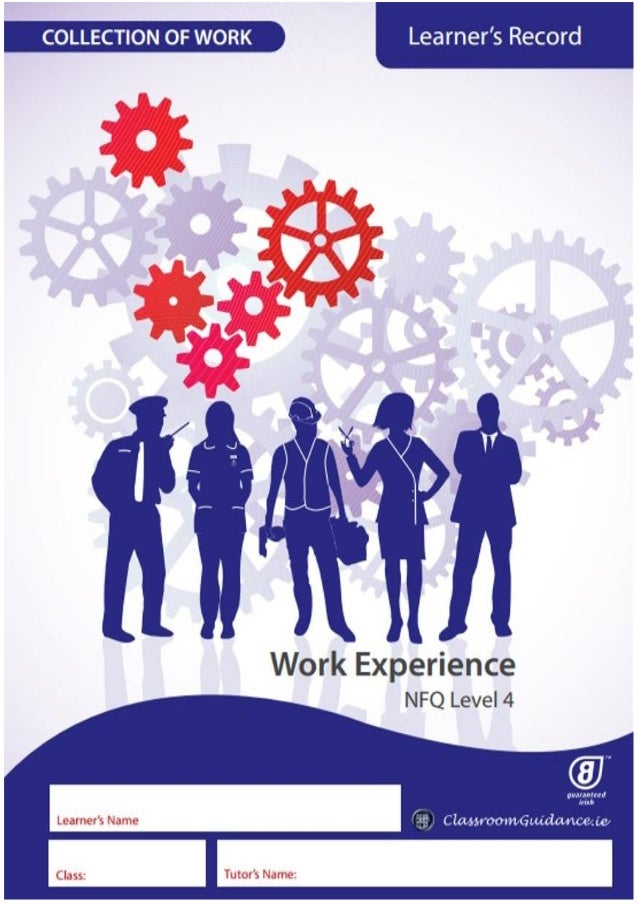 SECTION 1: INTRODUCTION 1.1 About Work Experience 1 1.2 Learning Objectives 2 SECTION 2: GENERAL WORK RELATED INFORMATION ...