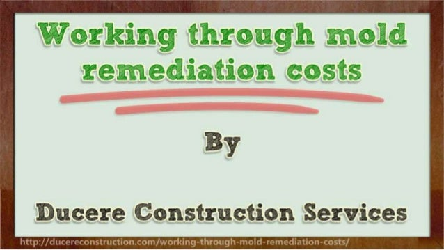 Working through mold remediation costs