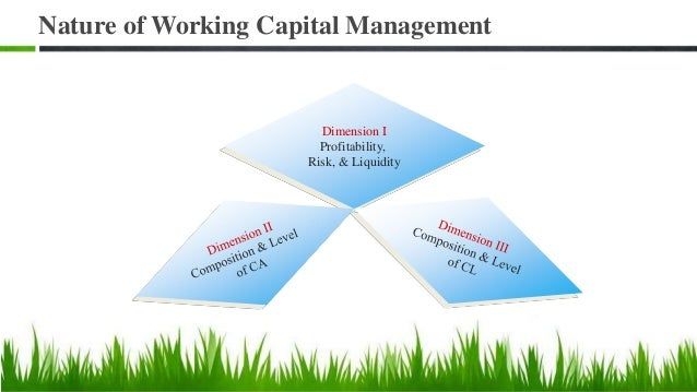 Working Capital Financing Mix Approaches to Financing Mix The Hedging or Matching Approach The Conservative Approach The A...