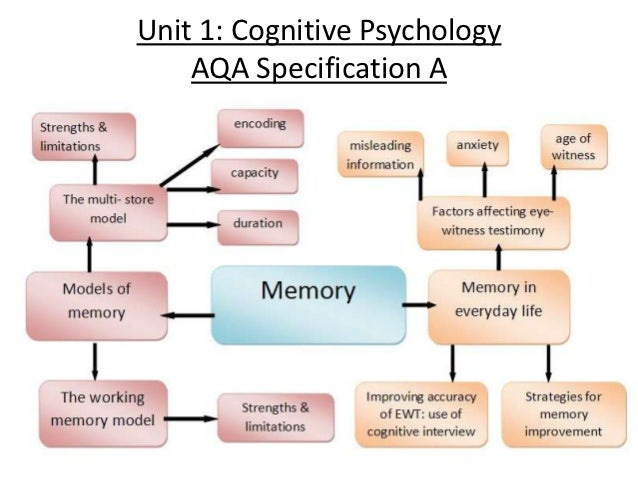 Collection of as memory aqa psychology