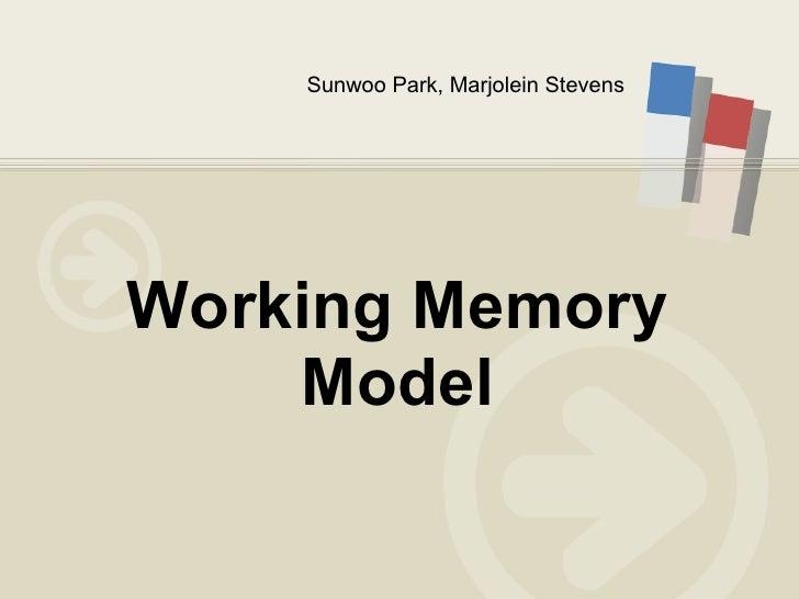 Sunwoo Park, Marjolein Stevens Working Memory Model