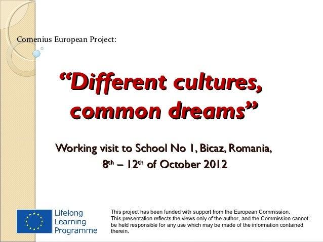 "Comenius European Project:          ""Different cultures,           common dreams""          Working visit to School No 1, B..."