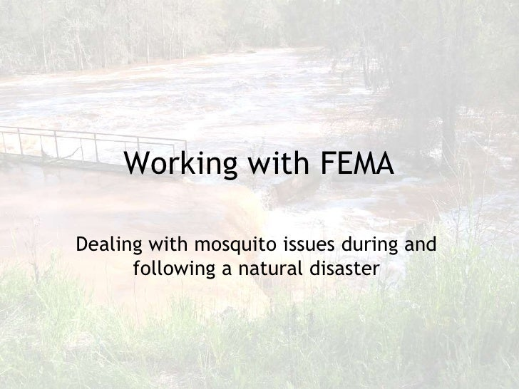 Working with FEMA  Dealing with mosquito issues during and       following a natural disaster                             ...
