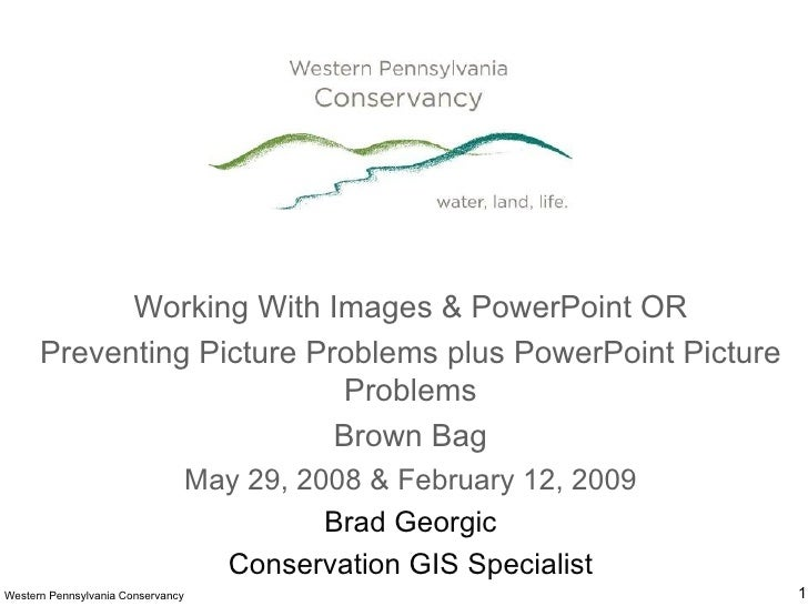 Working With Images & PowerPoint OR Preventing Picture Problems plus PowerPoint Picture Problems Brown Bag May 29, 2008 & ...