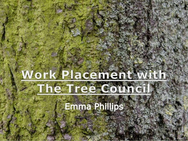 The Tree Council • UK's lead charity for trees • Established 1974 – works in partnership with communities, organisations a...