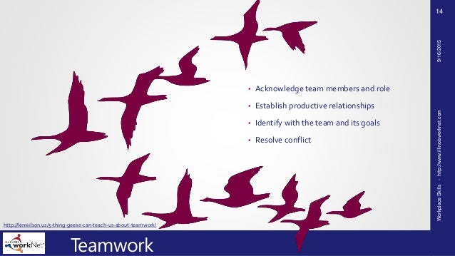 leadership and teamwork 2014/1/10 leadership and teamwork are both important, often co-occurring functions in a business you can exhibit leadership and teamwork simultaneously, but the role and impact of each carries significance apart from the other often, an.