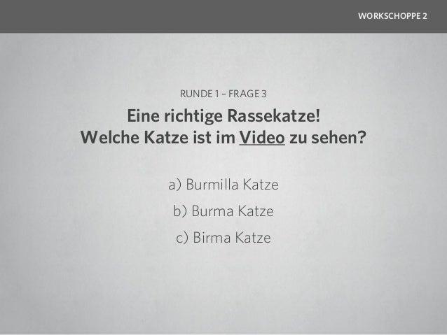 WORKSCHOPPE 2            RUNDE 1 – FRAGE 3     Eine richtige Rassekatze!Welche Katze ist im Video zu sehen?          a) Bu...