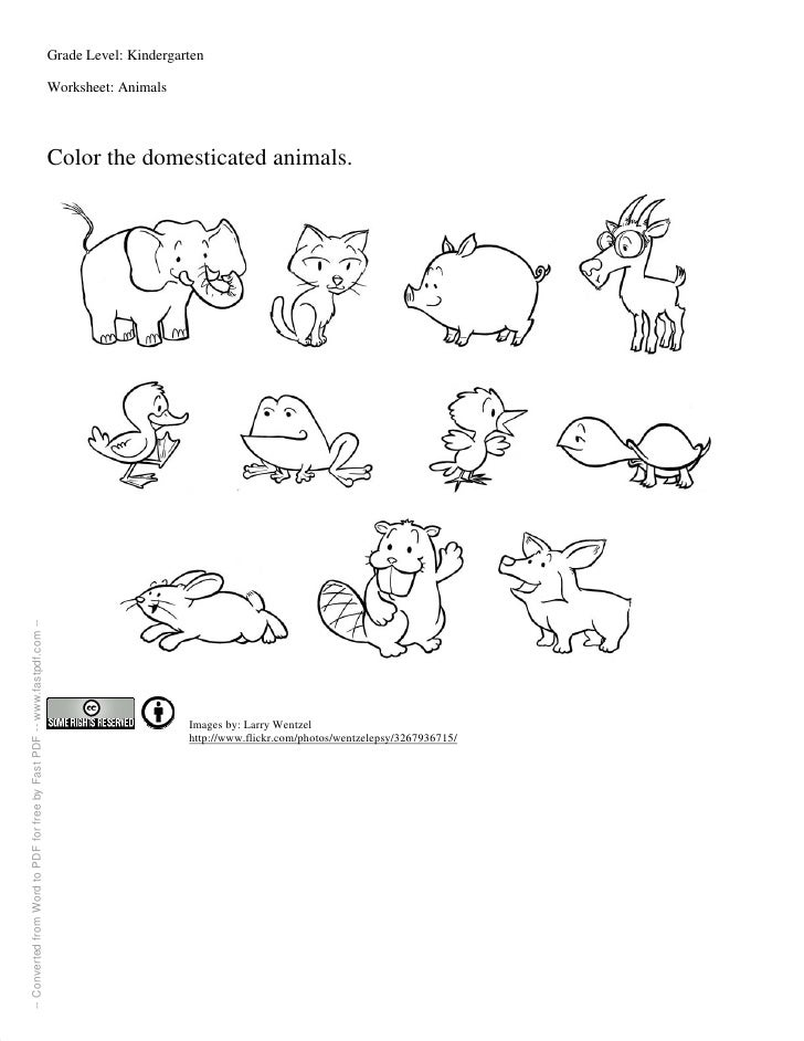 Worksheet For Kindergartners