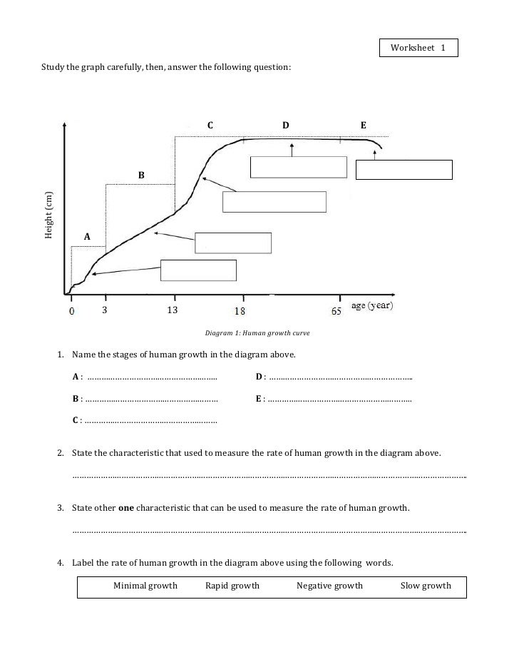 Worksheet 1Growth – Human Population Worksheet