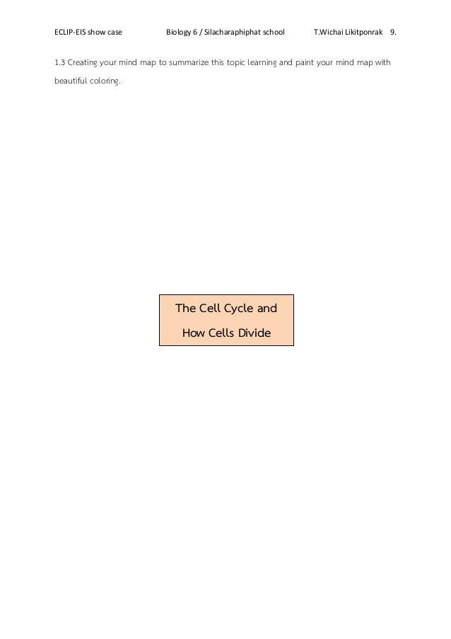 Worksheet cell division – Cell Division Worksheet