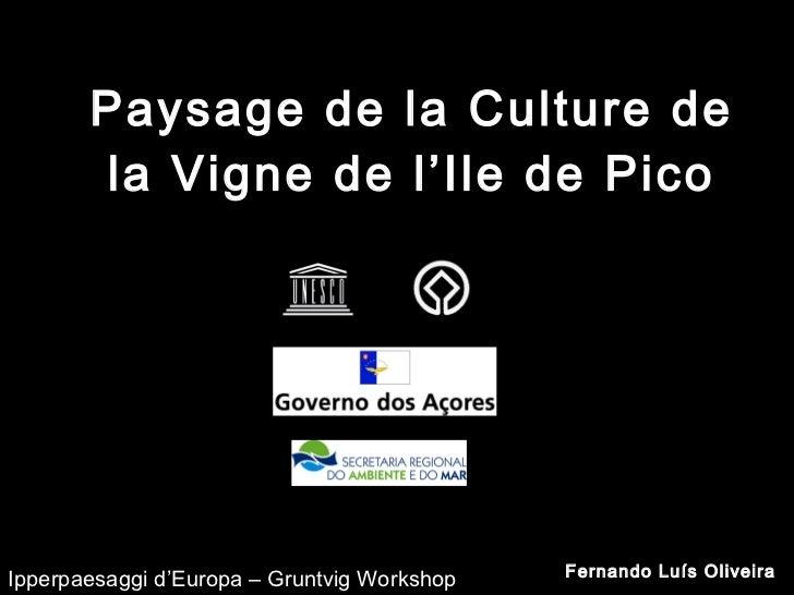 Paysage de la Culture de la Vigne de l'Ile de Pico Fernando Luís Oliveira Ipperpaesaggi d'Europa – Gruntvig Workshop