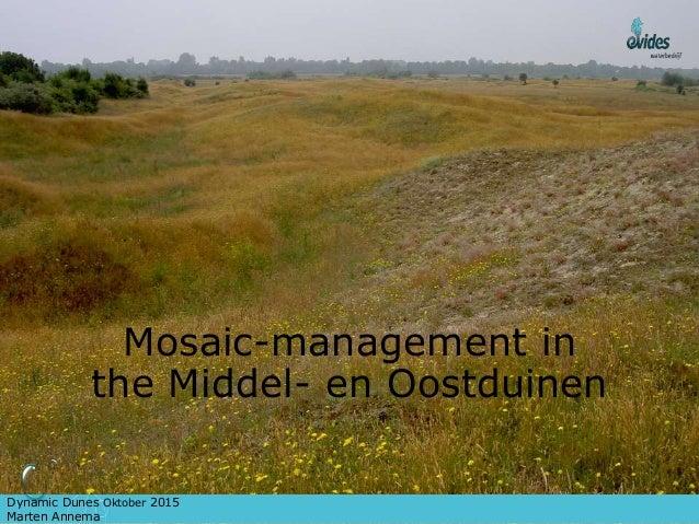 Mosaic-management in the Middel- en Oostduinen Dynamic Dunes Oktober 2015 Marten Annema