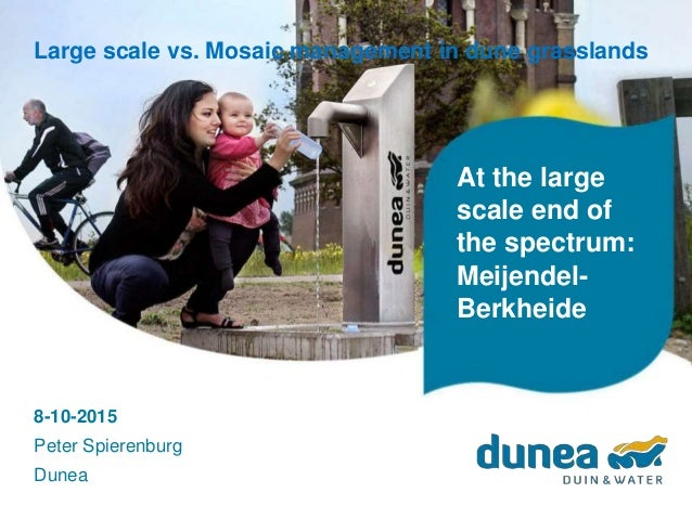 At the large scale end of the spectrum: Meijendel- Berkheide Large scale vs. Mosaic management in dune grasslands 8-10-201...