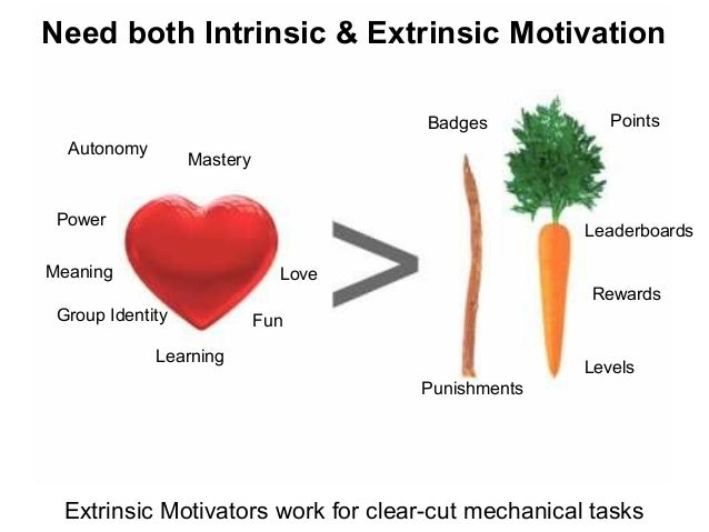 Extrinsic Vs Intrinsic Motivation Need both Intri...