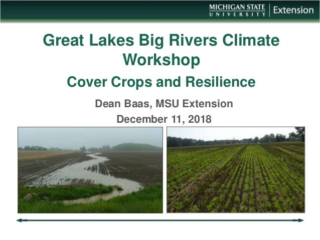 Great Lakes Big Rivers Climate Workshop Cover Crops and Resilience Dean Baas, MSU Extension December 11, 2018