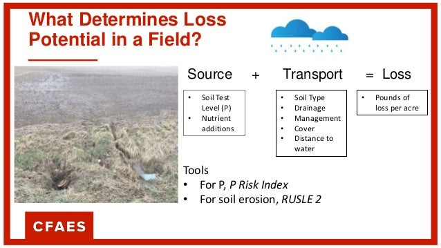 What Determines Loss Potential in a Field? Source + Transport = Loss • Soil Test Level (P) • Nutrient additions • Soil Typ...