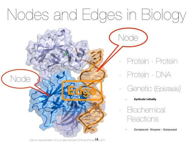 Nodes and Edges in Biology                                                                         Node                   ...