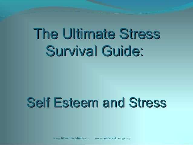 The Ultimate StressThe Ultimate Stress Survival Guide:Survival Guide: Self Esteem and StressSelf Esteem and Stress www.lif...