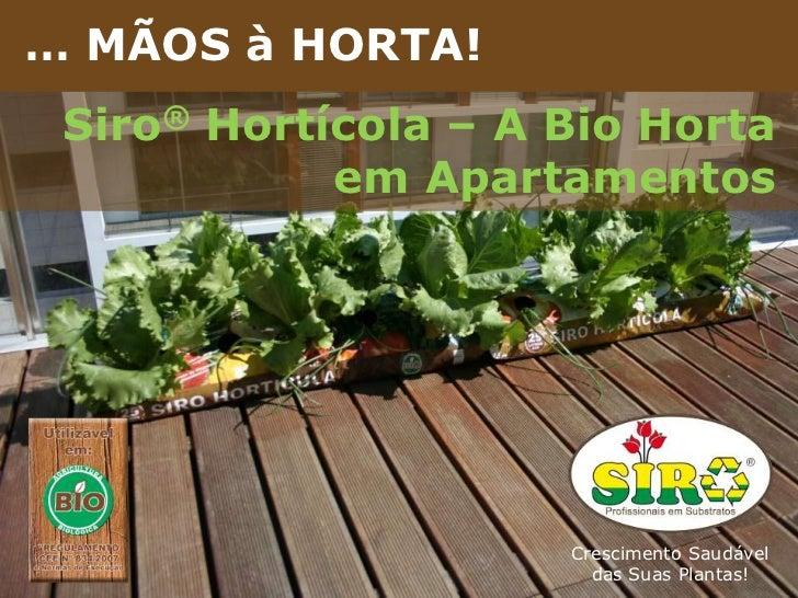 Brochura de Apresentação da Empresa<br />… MÃOS à HORTA!<br />Siro® Hortícola – A Bio Horta em Apartamentos<br />Crescimen...