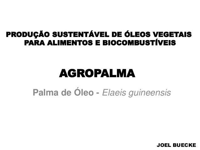 AGROPALMA Palma de Óleo - Elaeis guineensis PRODUÇÃO SUSTENTÁVEL DE ÓLEOS VEGETAIS PARA ALIMENTOS E BIOCOMBUSTÍVEIS JOEL B...